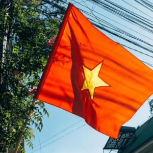 Víza ve Vietnamu